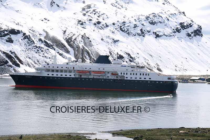 Comprendre et choisir la croisière de luxe en Antarctique