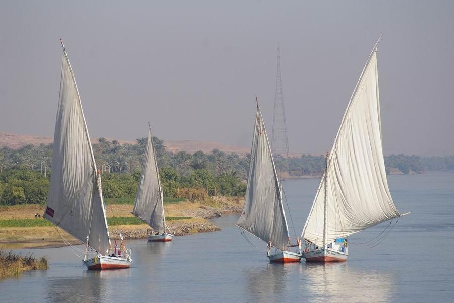 Les Felouques sur le Nil